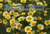 CD cover Water-wise Gardenting in CCC